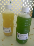 Cucumber and Ginger Juices at Manza