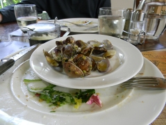 End of Vongole with pistachios