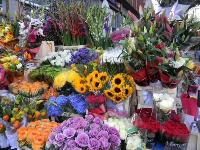 Flowers_Dublin